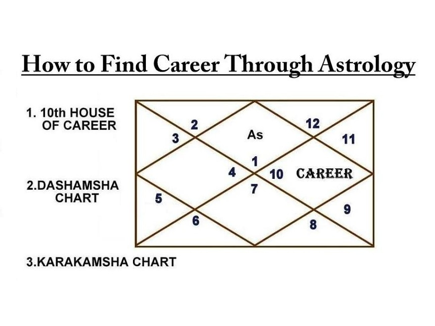 Career Finding Special Steps